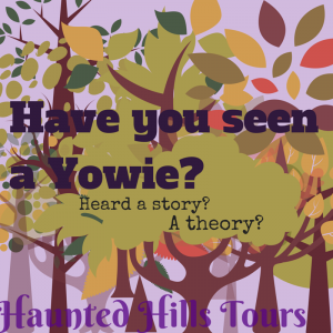 have-you-seen-a-yowie