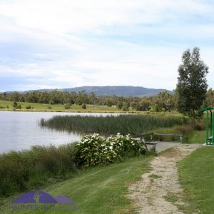 Churchill Victoria, Latrobe Valley, things to do, Ducks, Hyland park, ruins,