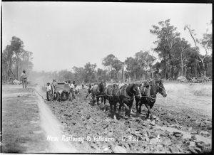 Gippsland line - Yallourn creation 1921 horses over rocks laying rail, historic moe- yallourn railline